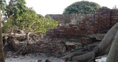 Mur de l'école spéciale